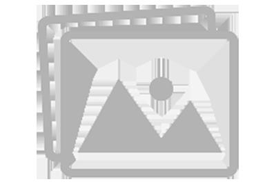 Struktur Organisasi - SMP NEGERI 1 BANYUPUTIH